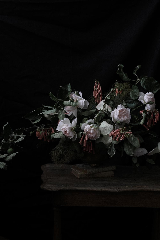 ashleyandthehermioneroses-87.jpg