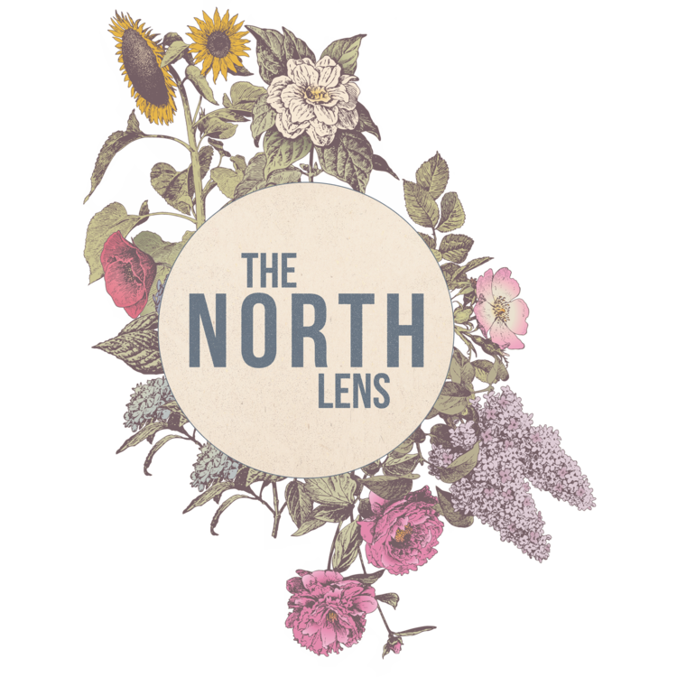 THE NORTH LENS