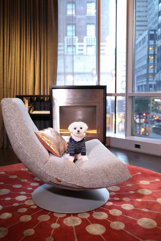 @mochiandthecity Hotel 48 LEX