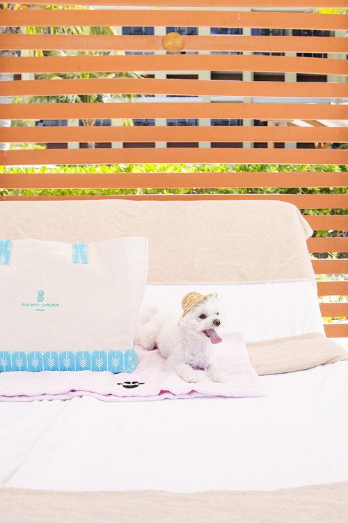 Mochi Ritz Carlton Aruba Cabana Beach Bag.jpg