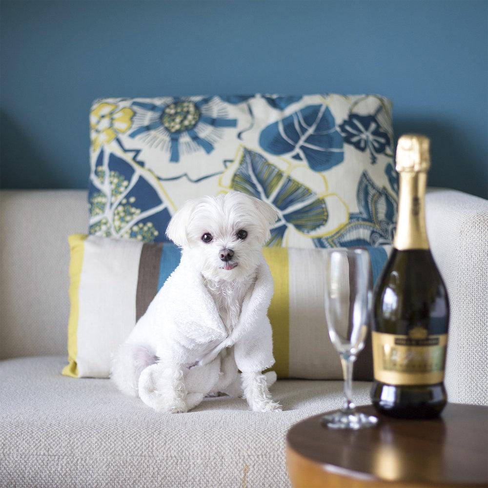 Mochi Ritz Carlton Aruba Champagne Spa Robe.jpg