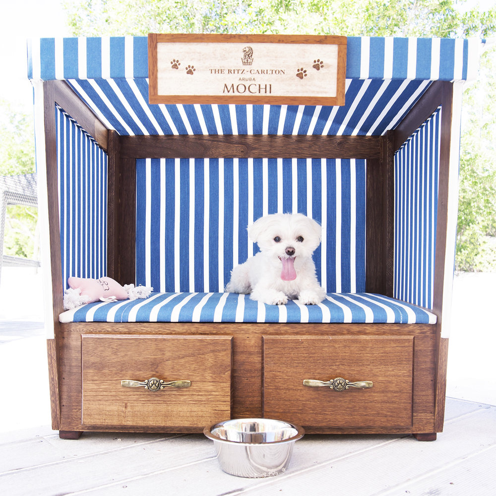 Mochi Ritz Carlton Aruba Dog Cabana.jpg