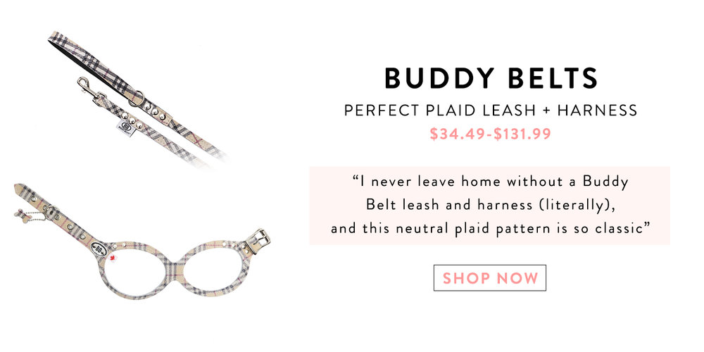 Mochiandthecity Holiday Gift Guide Buddy Belt.jpg