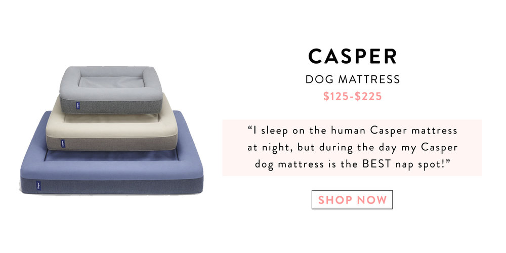 Mochiandthecity Holiday Gift Guide Casper Dog Mattress.jpg