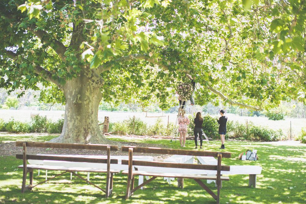 A+B Wedding-163.jpg