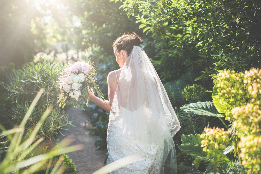 A+B Wedding-1014.jpg