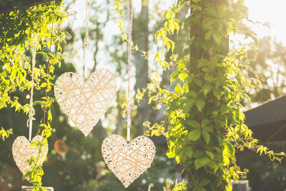 A+B Wedding-1126.jpg