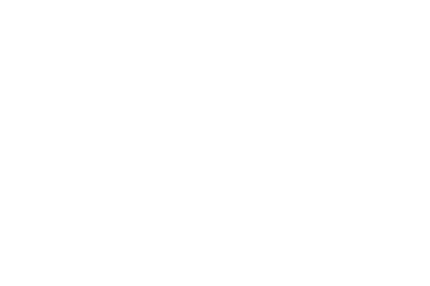 Gold Coast Dog Trainer