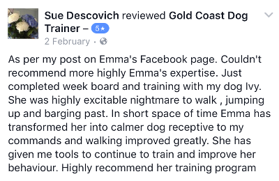 Gold Coast Dog Trainer Review 5.PNG