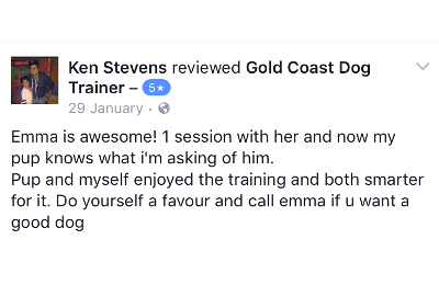 Gold Coast Dog Trainer Review 6.PNG