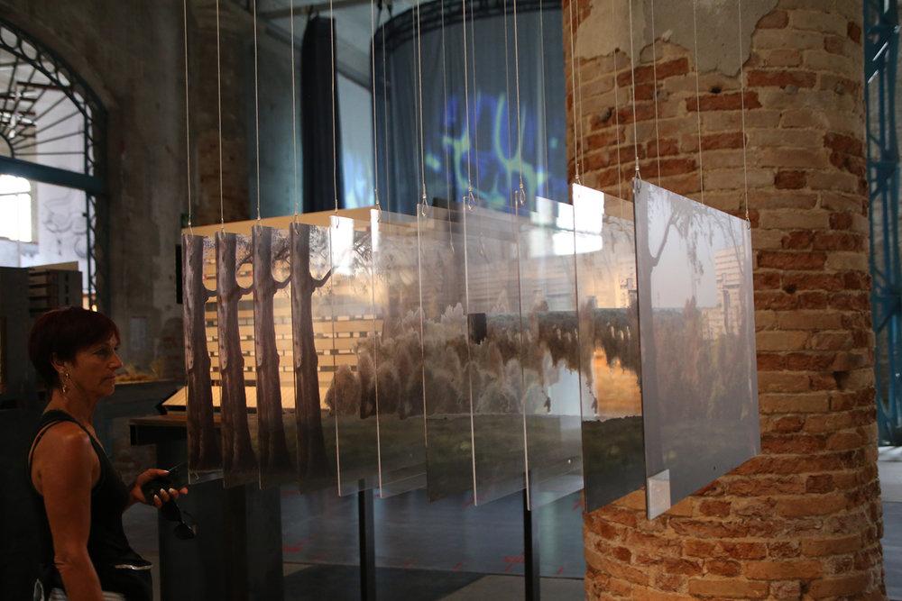 biennale architecture venise 2018 516.JPG