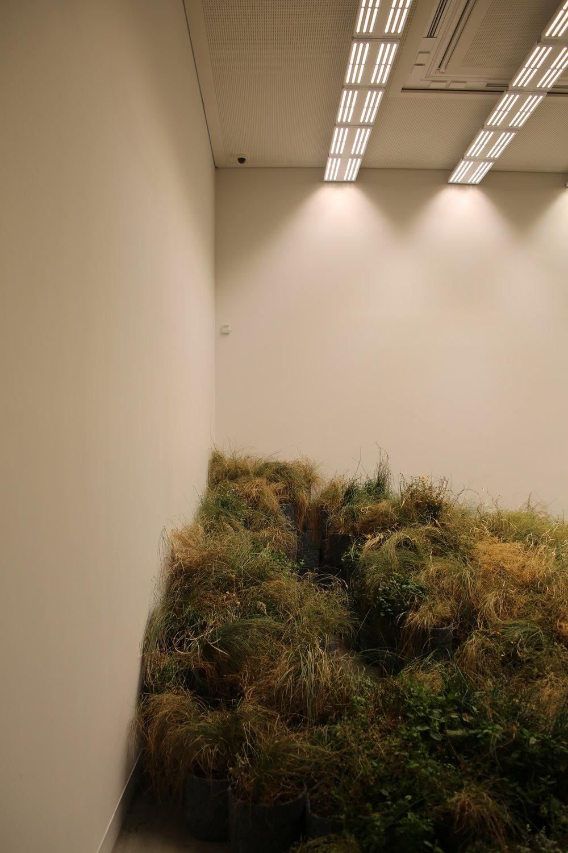 biennale architecture venise 2018 268.JPG
