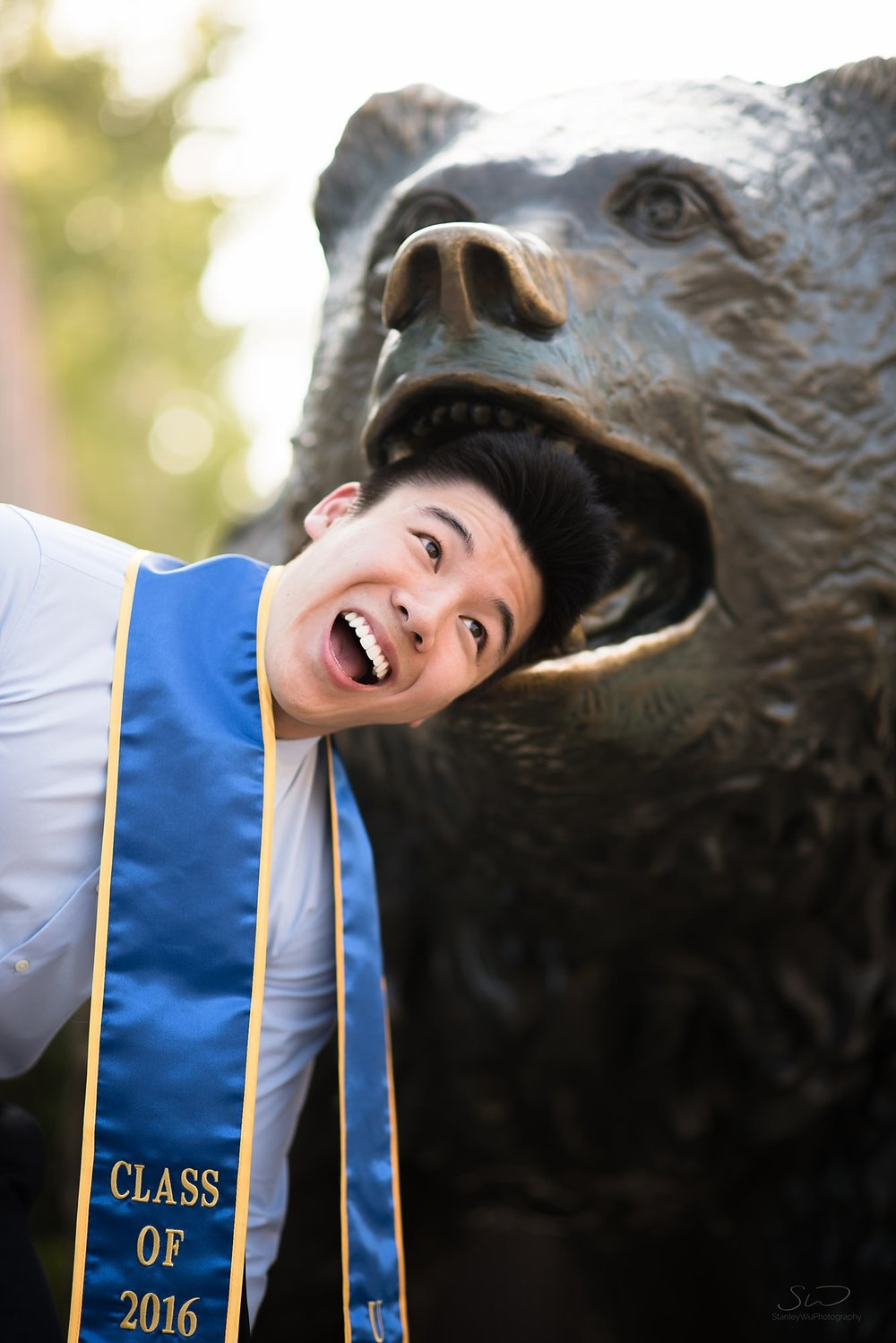 fun graduation senior portrait of guy sticking his head into a bruin bear statue mouth at ucla in los angeles