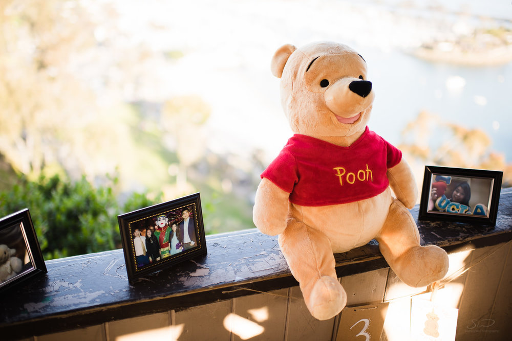 Winnie the Pooh with old picture frames. Epic cliffside proposal in Dana Point | Stanley Wu Photography Portrait & Wedding Photographer | Los Angeles, Orange County, Southern California