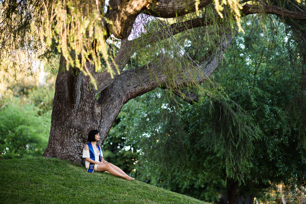 Copy of Copy of college senior girl under a tree in a forest | Stanley Wu Photography | Los Angeles | Graduation Portraits | UCLA, USC, LMU, Pepperdine, CSULA, CSUN, CSULB, UCI, UCSD