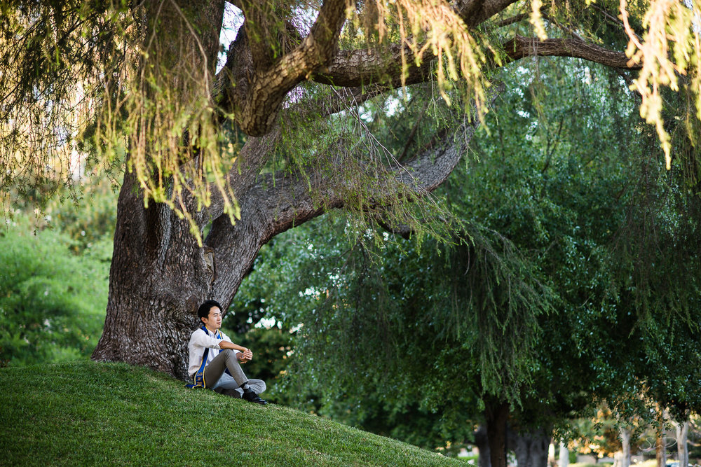 Copy of Copy of college senior under a tree in a forest | Stanley Wu Photography | Los Angeles | Graduation Portraits | UCLA, USC, LMU, Pepperdine, CSULA, CSUN, CSULB, UCI, UCSD