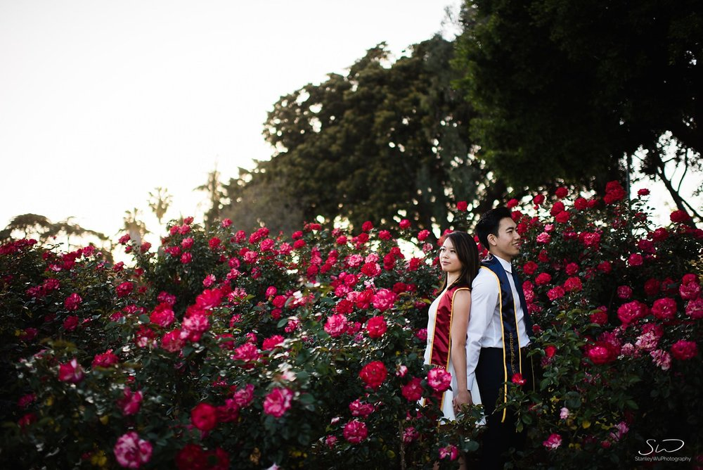 USC and UC Berkeley couple posing in rose bushes at Rose Garden at USC | Los Angeles Graduation and Senior Portrait Photographer