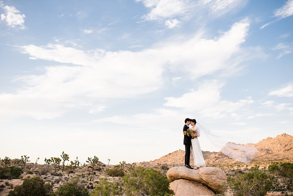 joshua-tree-wedding_0061.jpg