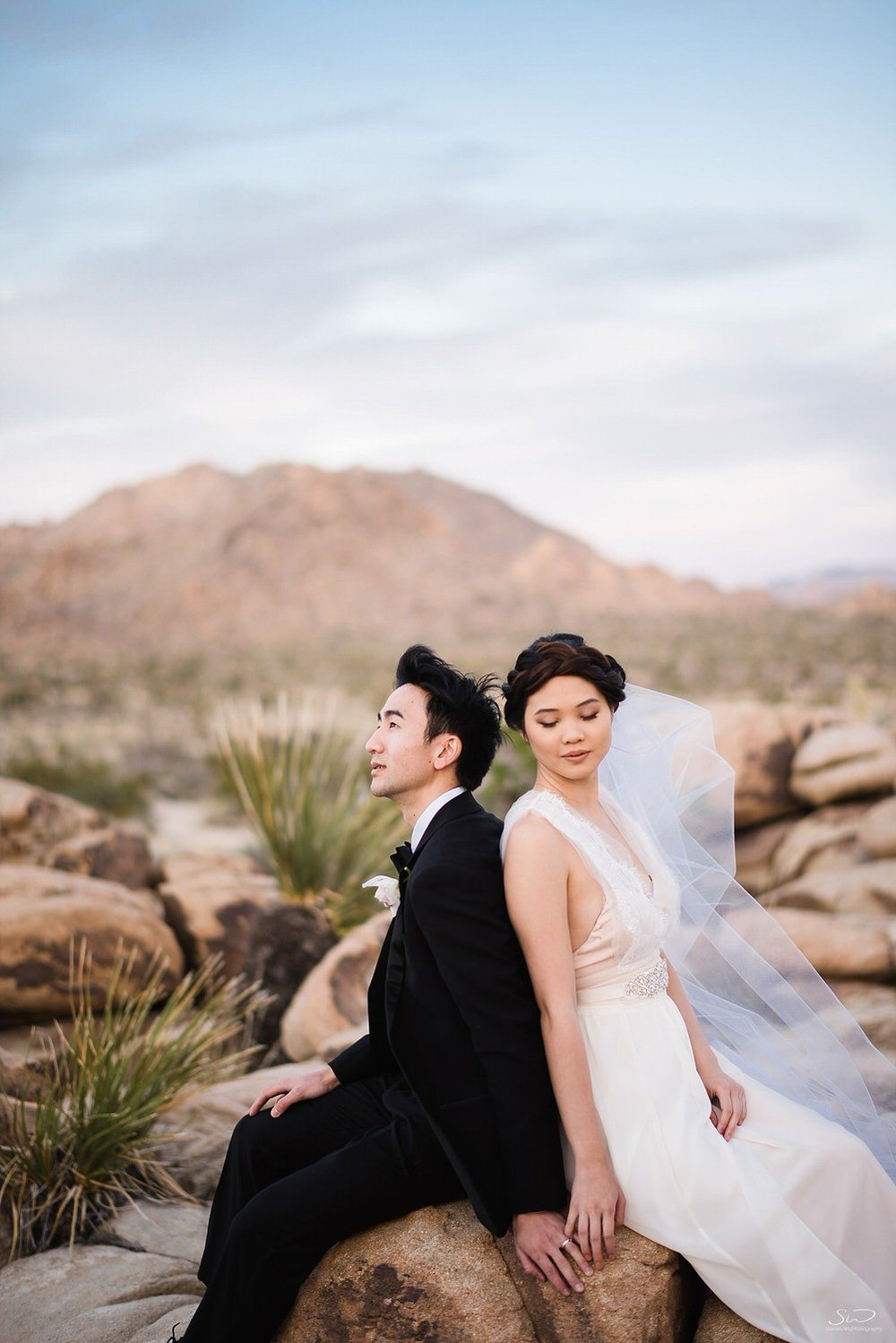 joshua-tree-wedding_0064.jpg