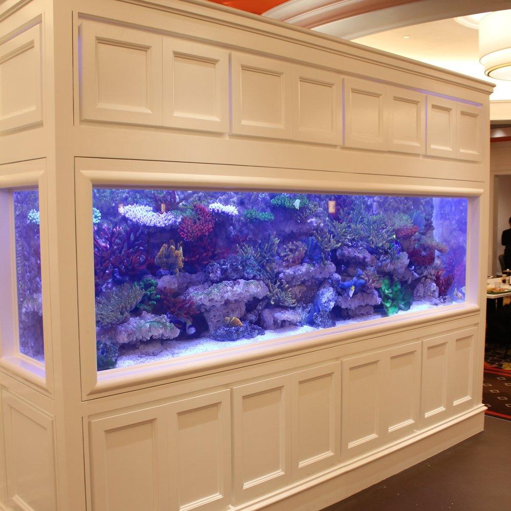 人造珊瑚礁水族箱 - 澳門賭場