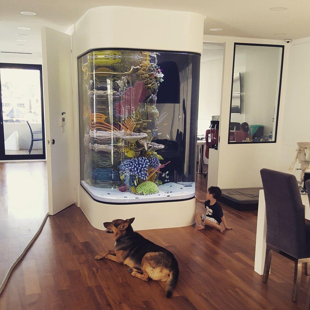 人造珊瑚礁水族箱 - 香港私人遊艇住所