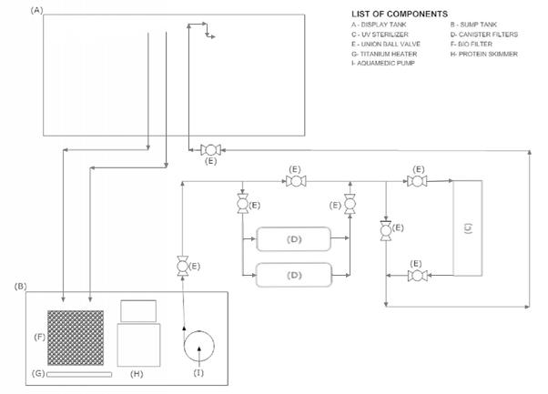 Macau Aquarium Filtration Schematic