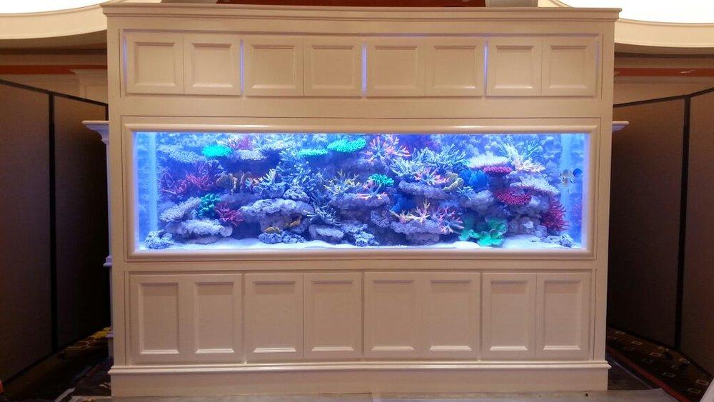 Macau aquarium
