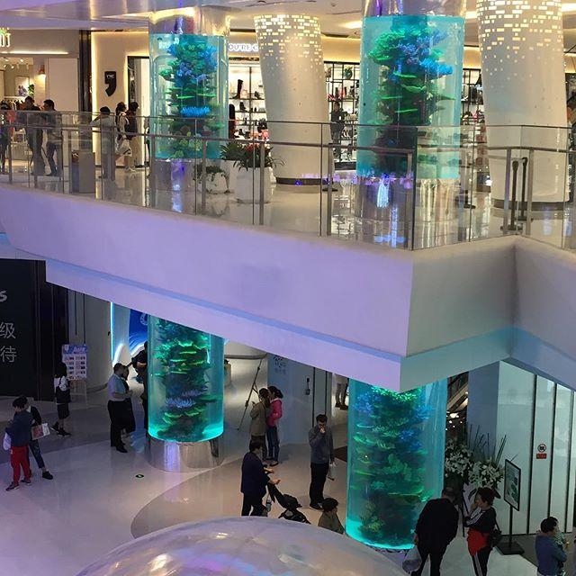 Xián Cylinder Aquariums