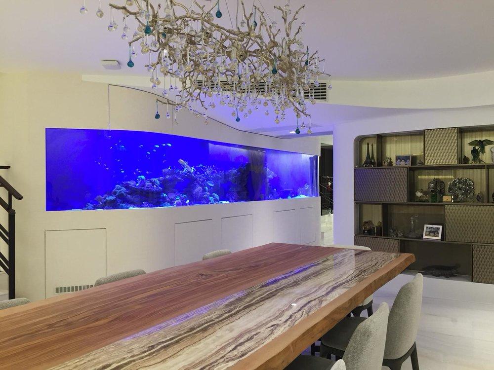 7m reef tank