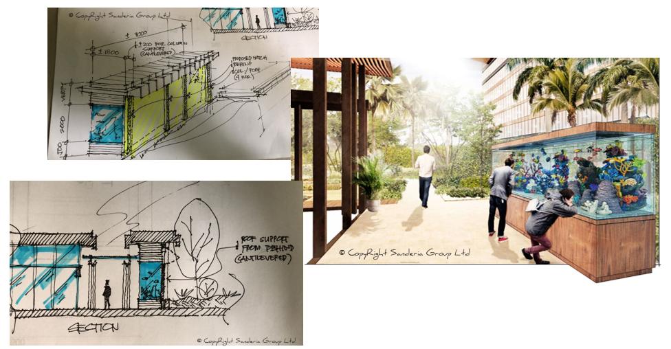 RedFin Aquarium Sketches.PNG