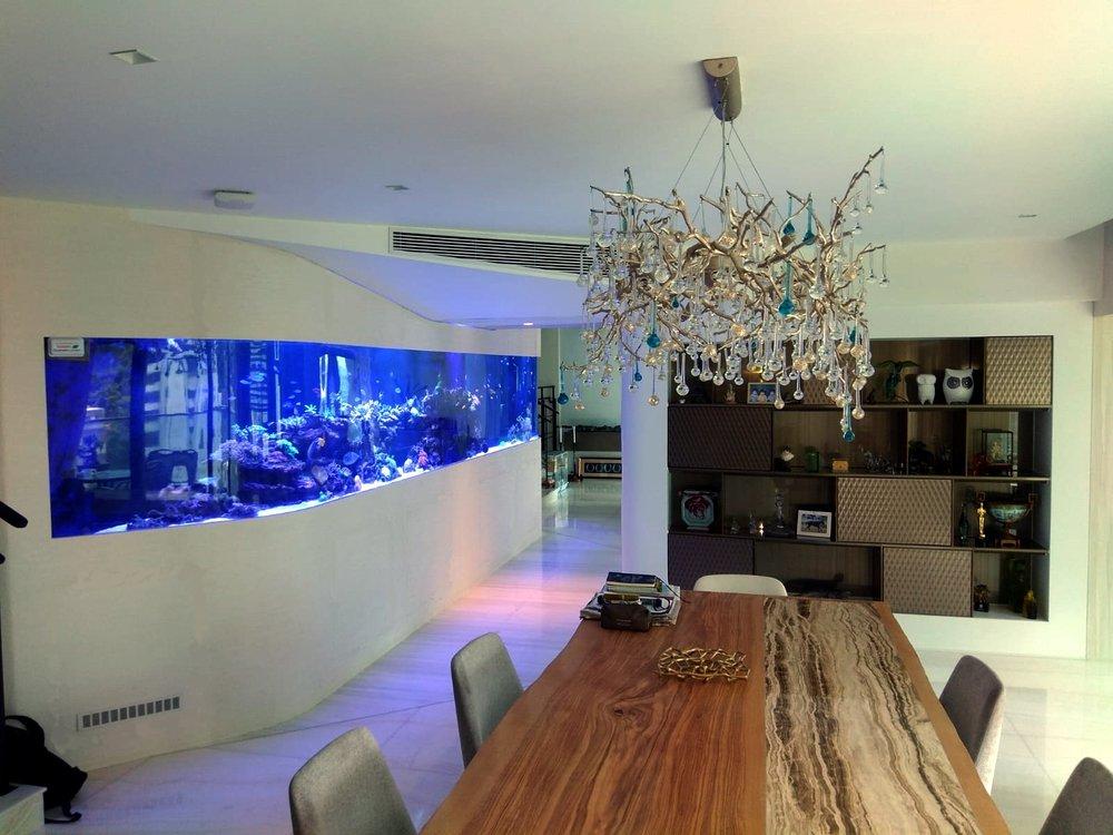 Hong Kong reef aquarium