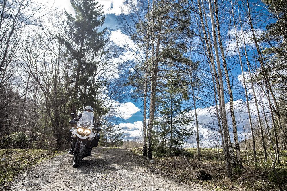 BIKE PIC OFF ROAD