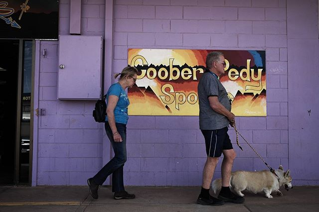 #locals walking a dog #cooberpedy @southaustralia #roadtrip for @austtraveller