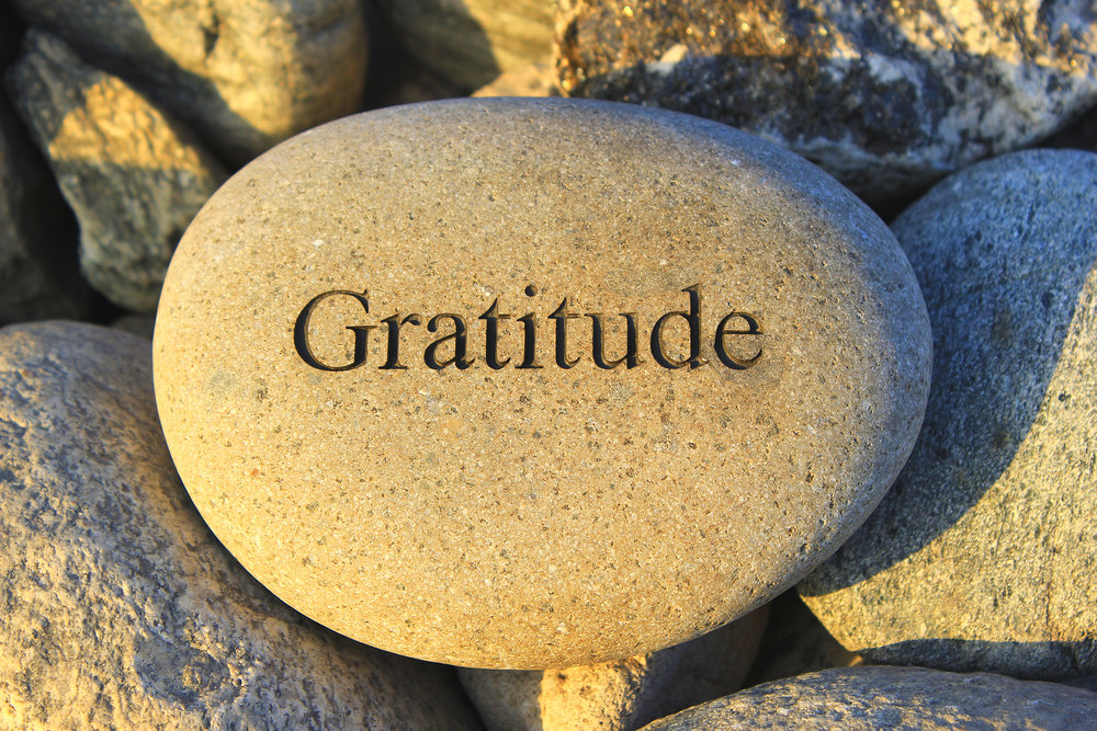 Show Appreciation - Volunteer Activity