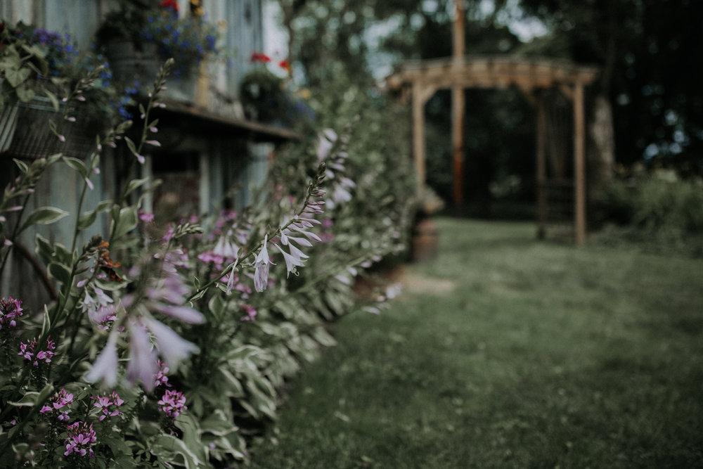 chantal-meighen-wedding-8.jpg