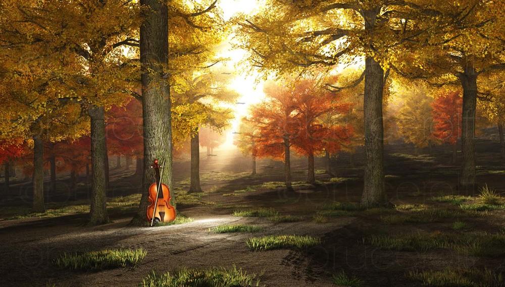 autumnviolin2_3 copy.jpg