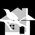 Real Estate for Birds + 60 Guilder Land Co