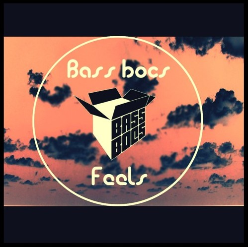 Listen to Feels by Bass Bocs.