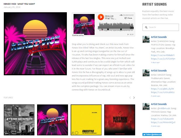 example of artist feature on music blog.JPG
