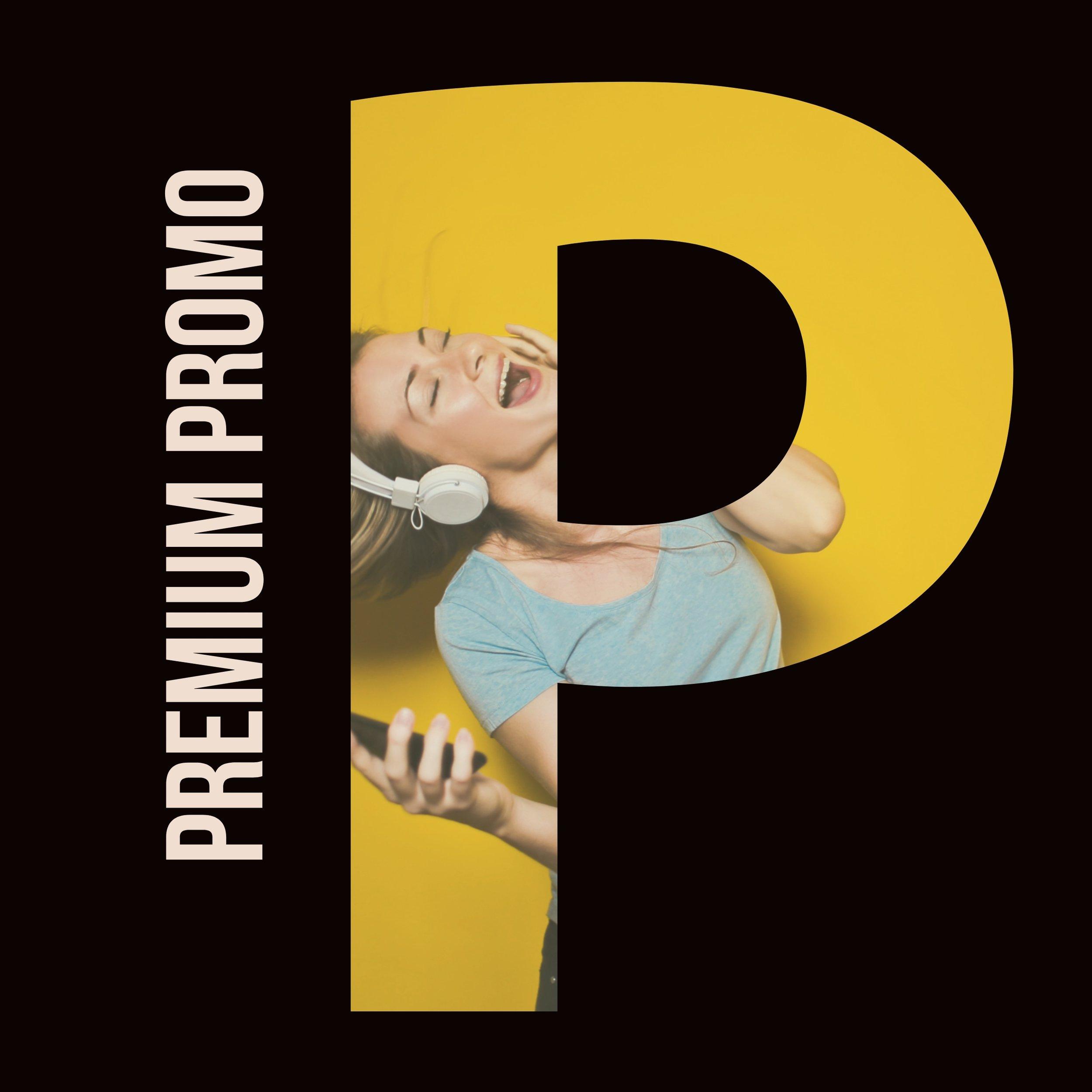 Organic SoundCloud Promotion (Premium Feature)