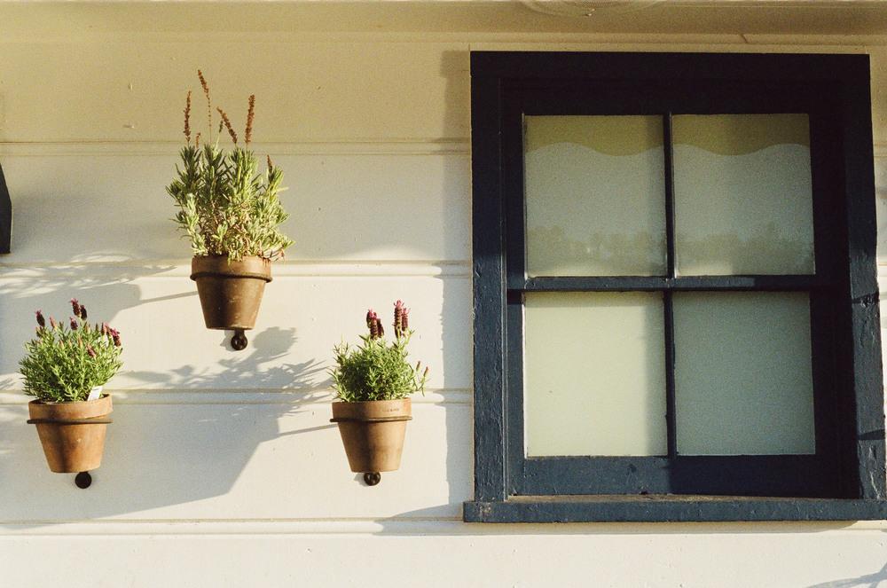 house-window-flowerpots.jpg
