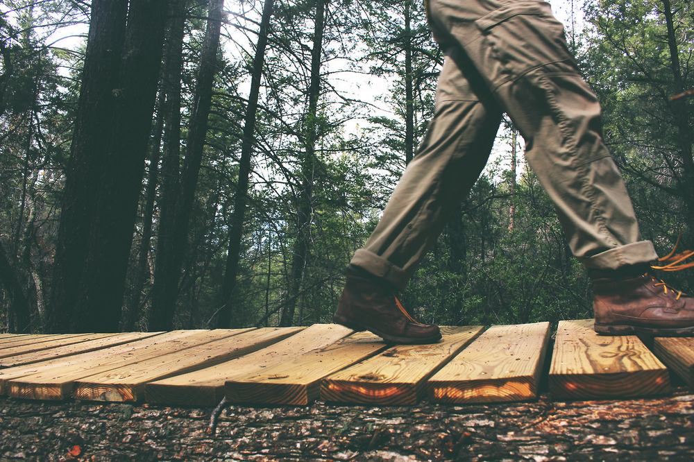 wood-nature-person-walking.jpg