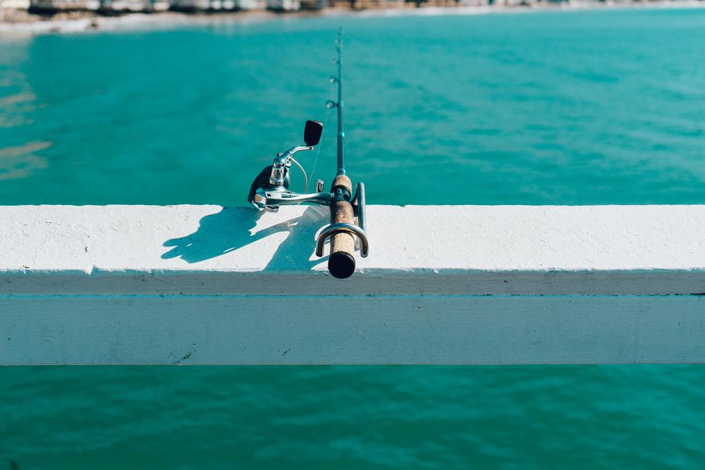 fishing-fishing-tackle.jpg
