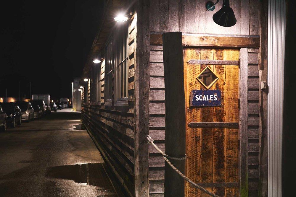 Scales151_web.jpg