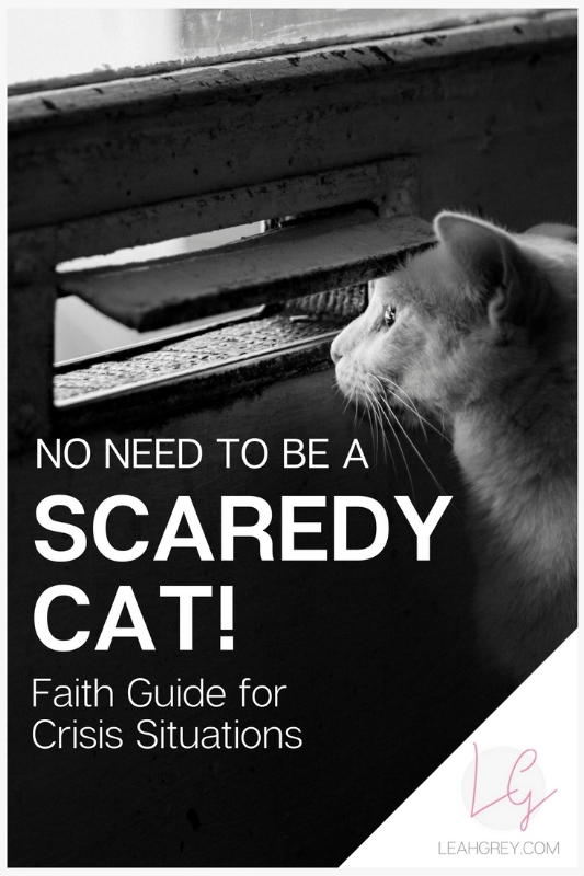 There's nothing like addiction to bring a spirit of fear into your life.  Our enemy has found a way to take down an entire home with just one person. If you find yourself in the throws of a spiritual battle, depending on where you're at in your walk of faith, there are a few things you can do. Check out the Scaredy Cat Faith Guide and get a free download to save for later!