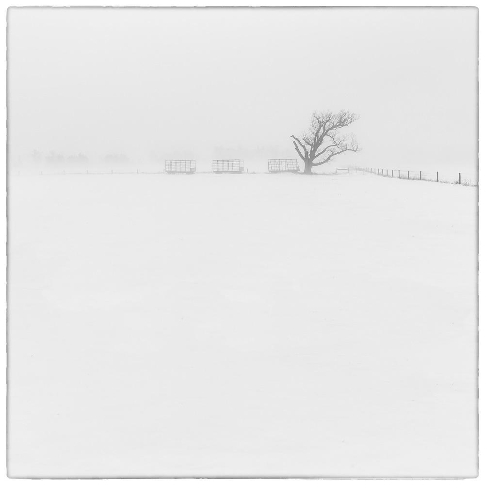 Misty-Vista-2.jpg