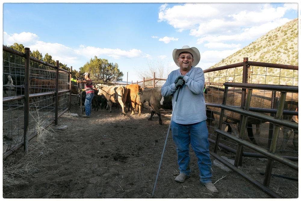 Cowboy-1Border.jpg