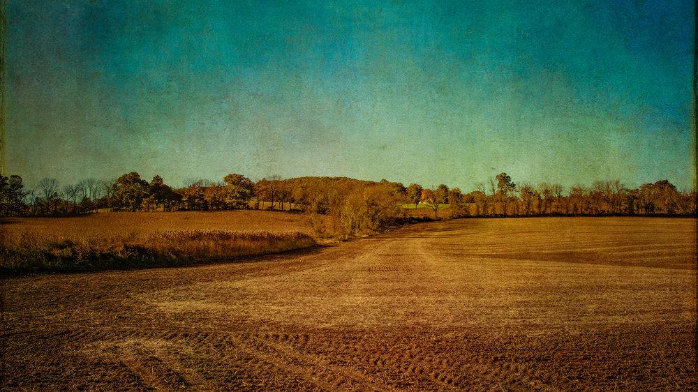 Craigmar-Field-1.jpg