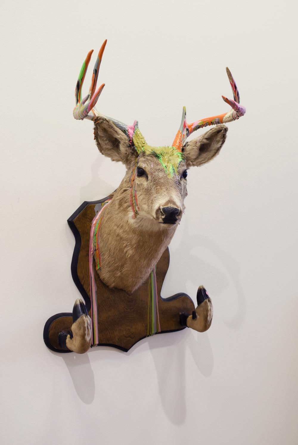 2.Deer_eJP.jpg
