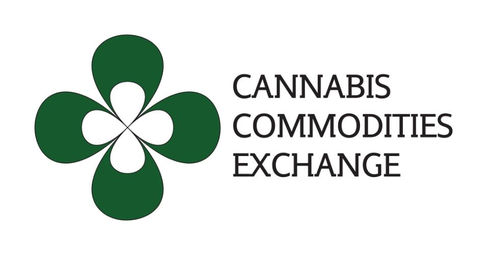 CCX Cannabis Marijuana Consulting Denver